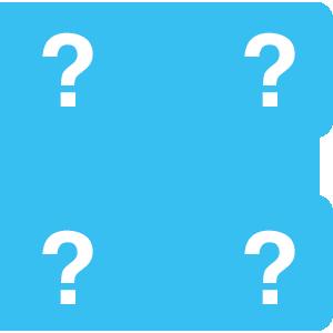 Custom Questions